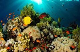 Pemkab Minahasa Tenggara dan Badung Kolaborasi Pariwisata