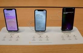 Apple Catat Penjualan Musim Liburan di Atas Ekspektasi