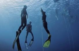 Ini 10 Spot Diving Terbaik di Dunia