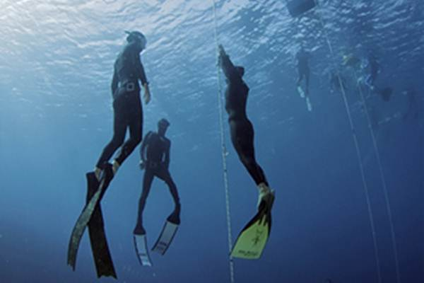 Latihan Freediving - freediveinternational.com