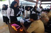 Lulus Passing Grade SKD CPNS 2019 Belum Tentu Lolos ke Tahap SKB, Ini Penjelasan BKN