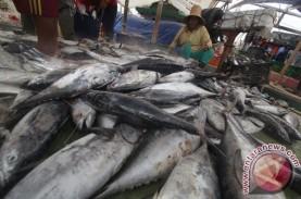 Pasar Ikan Modern Palembang Beroperasi Maret 2020