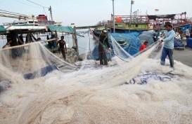 Asuransi Jasindo Luncurkan Asuransi Udang dan Ikan