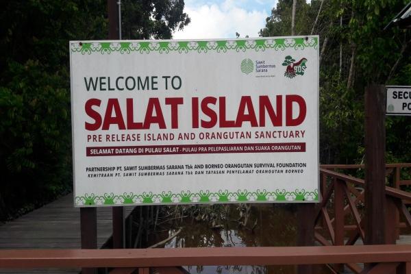 Pulau Salat, Kalimantan Tengah./Bisnis - Riendy Astria