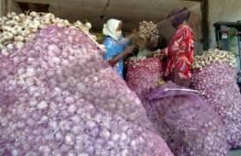 Polisi Telisik Dugaan Penimbunan 150 Ton Bawang Putih Karawang