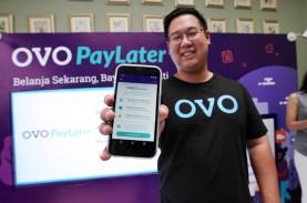 Pay Later Jadi Pesaing Bisnis Kartu Kredit