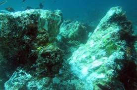 Agar Kecelakaan Kapal Tabrak Terumbu Karang di Raja…