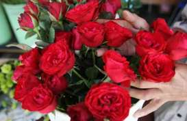 6 Pilihan Kado Valentine yang Murah Namun tetap Romantis dan Spesial