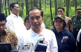 Presiden Jokowi Lepasliarkan Sepasang Elang Jawa Abu dan Rossy
