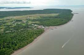Kawasan Industri Teluk Bintuni Mulai Disambangi Calon Investor