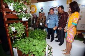 Indonesia Akan Jadi Tuan Rumah Pertemuan Internasional…