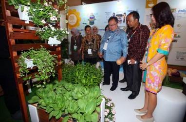 Indonesia Akan Jadi Tuan Rumah Pertemuan Internasional Percepatan SDGs