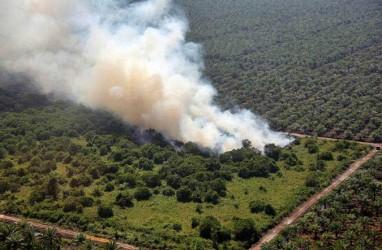 20 Titik Api Mulai Tampak di Riau