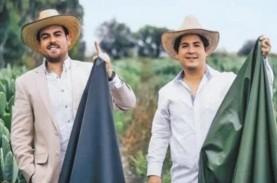 Dua Pengusaha Meksiko Ciptakan Kulit Sintetis dari…