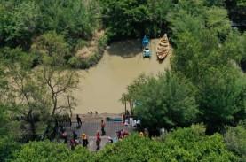 Pemkot Surabaya Larang Pengunjung Mangrove Bawa Plastik
