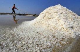 Petani Harap Harga Acuan Garam Segera Terbit