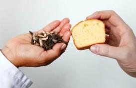 Apa Rasa Kue dari Bahan Baku Minyak Larva?