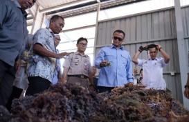 Menteri Edhy Lepas Ekspor Rumput Laut ke China
