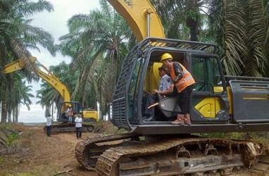 OKI Remajakan 10.500 Hektare Kebun Sawit