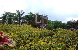 Ada Entrepreneur Pariwisata di Tengah Kebun Sawit