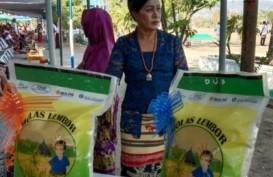 Molas Lembor, Beras Premium Lokal yang Jadi Primadona Warga NTT