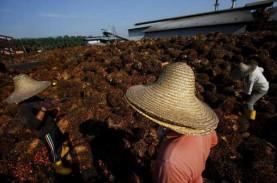 Harga TBS Sawit Riau Turun 4,58 Persen untuk 11 hingga…