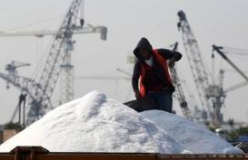 Kuota Garam Impor Dipangkas, Produksi Manufaktur Bisa Tak Optimal