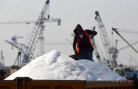 BAHAN BAKU KIMIA DASAR : CAP Cemaskan Pasokan Garam