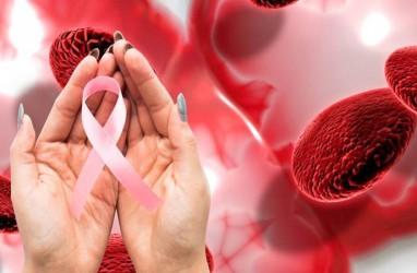 Anak Indonesia Paling Banyak Menderita Kanker Darah