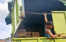 Aparat Cegah Peredaran Kayu Ilegal di Sumsel dan Jambi