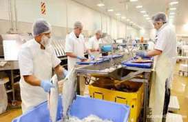 Industri Pengolahan Ikan Terdampak Corona