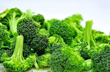 5 Sumber Vitamin C untuk Meningkatkan Daya Tahan Tubuh