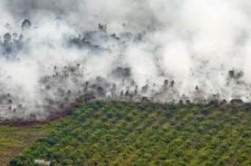 PENANGGULANGAN BENCANA : Lahan Terbakar Riau 996,58…