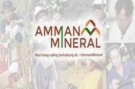 Ada Corona, Amman Mineral Tetap Akan Ekspor 372.626…