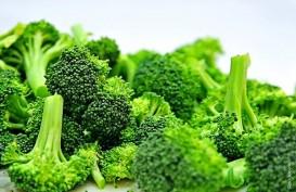 Makanan yang Tidak Bikin Berat Badan Bertambah