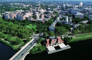 Harvard Cari Pendanaan US$1,1 Miliar Berbunga Rendah