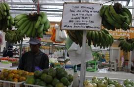 Jika Pandemi Corona Berkepanjangan, Bagaimana Menjaga Stok Pangan?