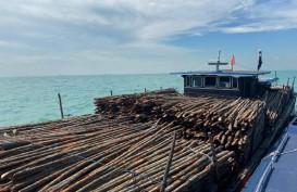 Bea Cukai Kepulauan Riau Amankan Kapal Pengangkut Kayu Ilegal