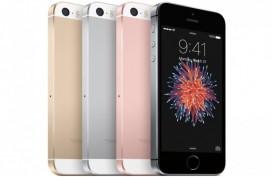 iPhone SE Siap Meluncur Bulan Ini di AS