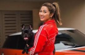 Sebelum Terinfeksi Corona, Andrea Dian Sering ke RS Untuk Promil