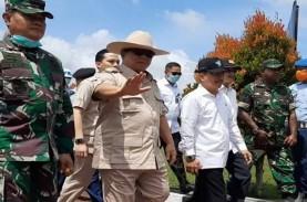 Prabowo Perintahkan Tanam Tanaman Pangan, Prediksi…
