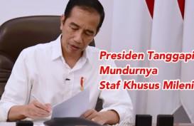 Staf Khusus Milenial Belva dan Andi Taufan Mundur, Begini Jawaban Jokowi