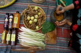 Gaduh Jamu Indonesia vs Herbal China untuk Tangani Covid-19