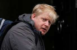 Anak PM Inggris Boris Johnson Lahir