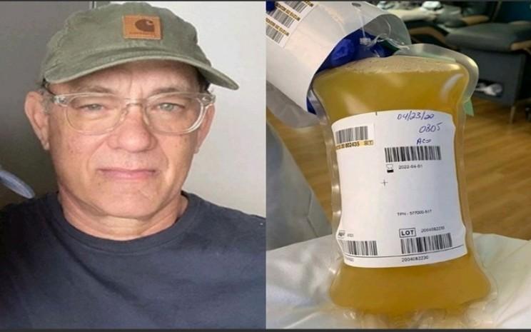 Tom Hanks dan plasma darahnya