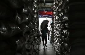 Antisipasi Stok Beras Akhir Tahun, Pemerintah Dinilai Perlu Impor