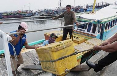 Dapat Stimulus Rp30 Miliar, Perum Perindo Geber Penyerapan Ikan Nelayan