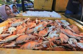Di Masa WFH, KKP Terbitkan 977 Sertifikat Kelayakan Pengolahan Ikan