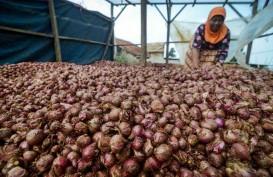 Kementan Prediksi Harga Bawang Merah Akan Turun Bulan Depan