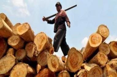 Strategi Peningkatan Ekspor Produk Kehutanan Perlu Disiapkan